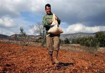 Çiftçilere 10 milyar lira devlet desteği